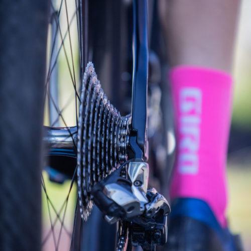 glèbe bike logo 2021-11